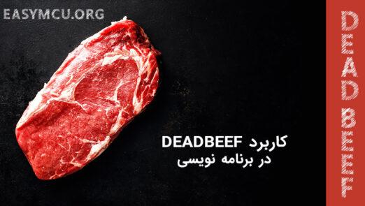 کاربرد اصطلاح DEAD BEEF در برنامه نویسی